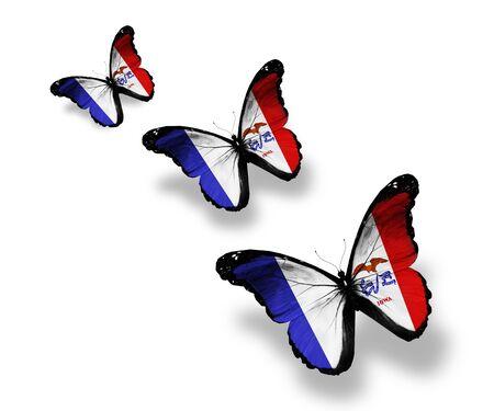 Three Iowa flag butterflies, isolated on white photo