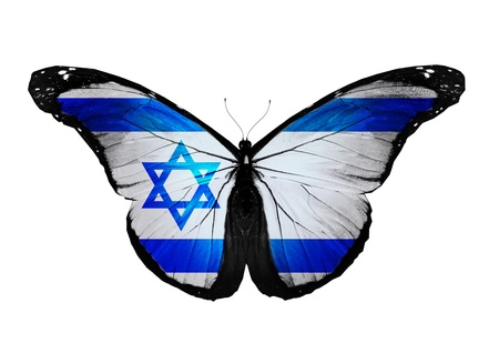 Israeli flag butterfly flying, isolated on white background Stock Photo - 14190677