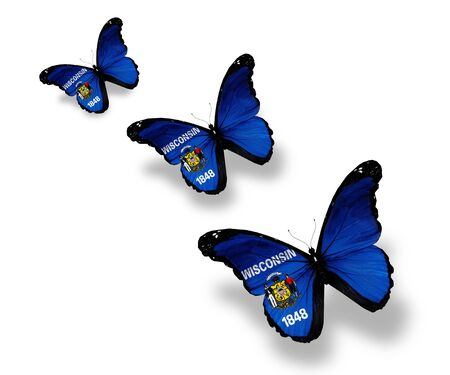 wisconsin flag: Three Wisconsin flag butterflies, isolated on white