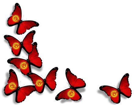 kyrgyzstan: Mariposas de Kirguist�n bandera, aisladas sobre fondo blanco