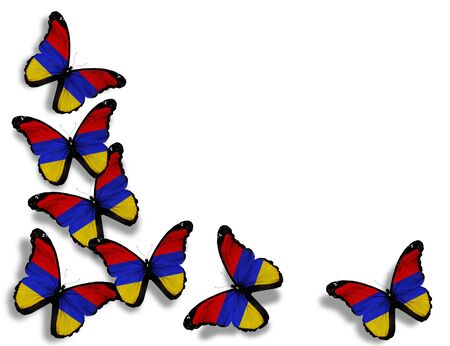 Armenian flag butterflies, isolated on white background photo