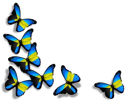 bahamas: Bahamaanse vlag vlinders, geïsoleerd op witte achtergrond