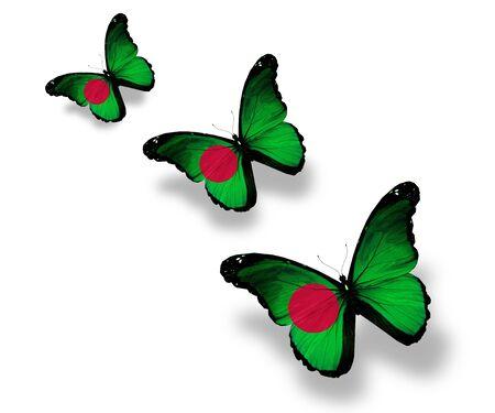 Three Bangladesh flag butterflies, isolated on white photo