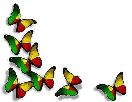 Benin flag butterflies, isolated on white background photo