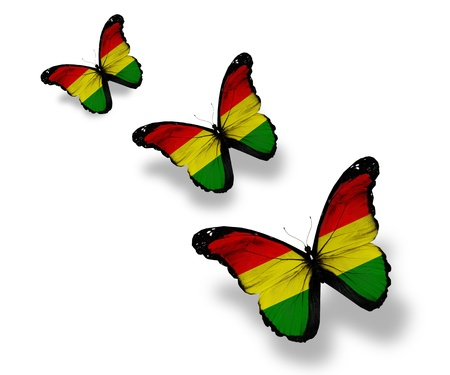 bolivian: Three Bolivian flag butterflies, isolated on white