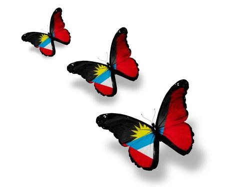 antigua flag: Three Antigua and Barbuda flag butterflies, isolated on white