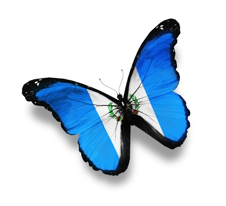 bandera de guatemala: Bandera de Guatemala mariposa, aislado en blanco