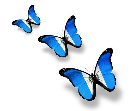 guatemala: Three Guatemala flag butterflies, isolated on white Stock Photo