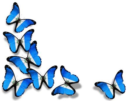 bandera de guatemala: Mariposas de Guatemala bandera, aisladas sobre fondo blanco Foto de archivo
