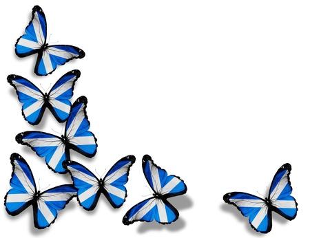 scottish flag: Farfalle bandiera scozzese, isolato su sfondo bianco Archivio Fotografico