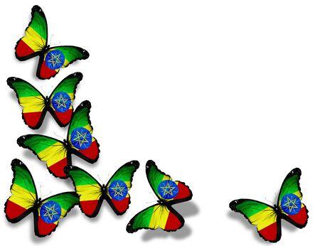 ethiopia flag: Ethiopia flag butterflies, isolated on white background