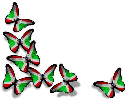 burundi: Republic of Burundi flag butterflies, isolated on white background Stock Photo
