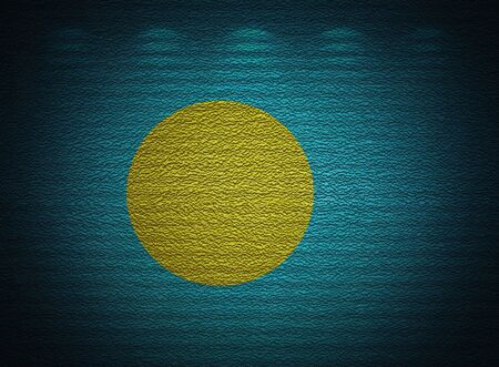 Palau flag wall, abstract grunge background photo
