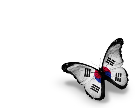 Korean flag butterfly, isolated on white background Stock Photo - 14326176