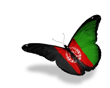 afghanistan flag: Afghani flag butterfly flying, isolated on white background