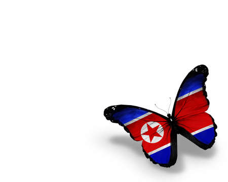 Korean flag butterfly, isolated on white background photo