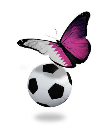 penalty flag: Concept - butterfly with Qatari flag flying near the ball, like football team playing   Stock Photo