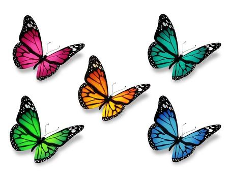 papillon rose: Groupe de papillons, isolé sur fond blanc Banque d'images