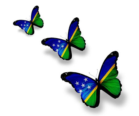 Three Solomon Islands flag butterflies, isolated on white photo