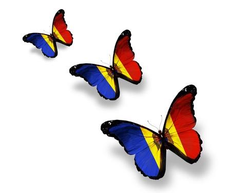Three Moldavian flag butterflies, isolated on white photo