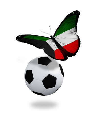 ball like: Concept - butterfly with Kuwaiti flag flying near the ball, like football team playing   Stock Photo