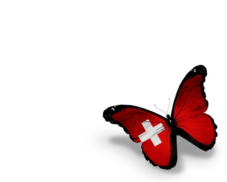 Swiss flag butterfly, isolated on white background photo