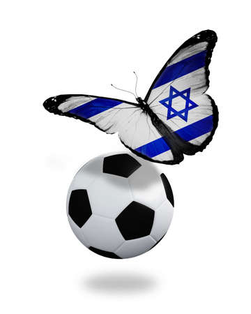 Concept - butterfly with Israeli flag flying near the ball, like football team playing   photo