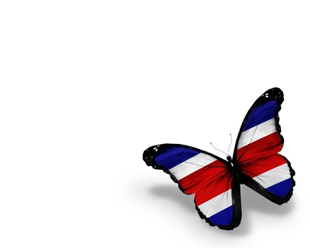 morpho: Costa Rica flag butterfly, isolated on white background
