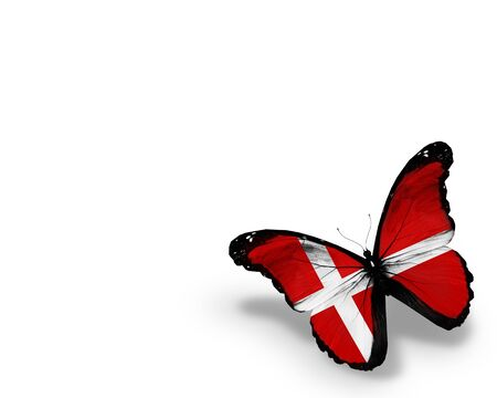 danish: Danish flag butterfly, isolated on white background
