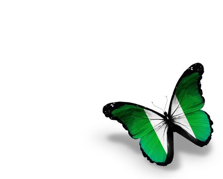 Nigeria flag butterfly, isolated on white background photo
