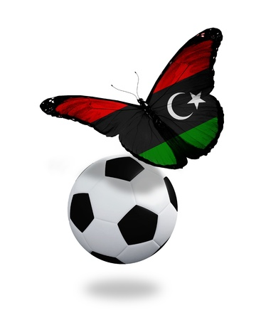 ball like: Concept - butterfly with Libyan flag flying near the ball, like football team playing   Stock Photo