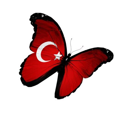 the turkish flag: Turkish flag butterfly flying, isolated on white background