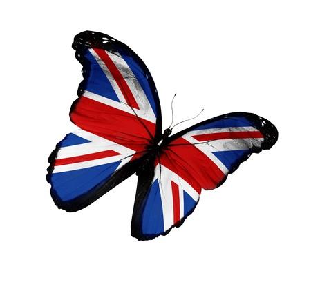 inglese flag: Inglese bandiera farfalla volare, isolato su sfondo bianco Archivio Fotografico