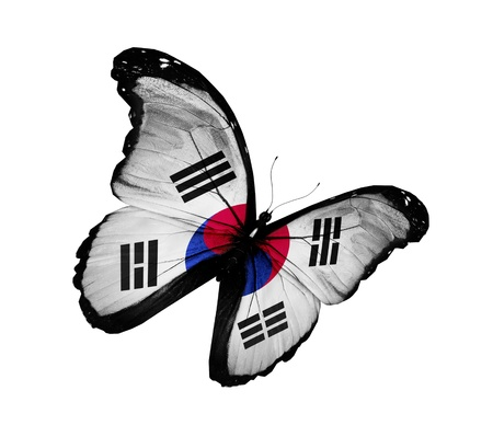 south korea flag: South Korea flag butterfly flying, isolated on white background