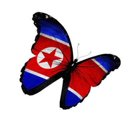 Korean flag butterfly flying, isolated on white background photo