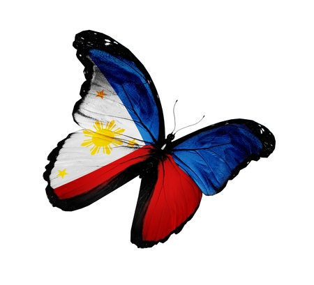 philippine: Philippine flag butterfly flying, isolated on white background