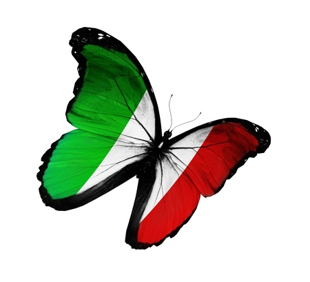 white flag: Italian flag butterfly flying, isolated on white background Stock Photo