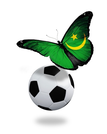 ball like: Concept - butterfly with  Mauritanian flag flying near the ball, like football team playing