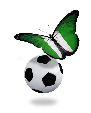 nigeria: Concept - butterfly with  Nigeria flag flying near the ball, like football team playing