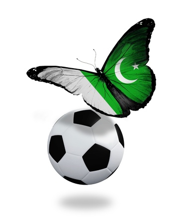 ball like: Concept - butterfly with Pakistani flag flying near the ball, like football team playing
