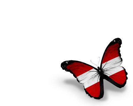 austrian: Austrian flag butterfly, isolated on white background