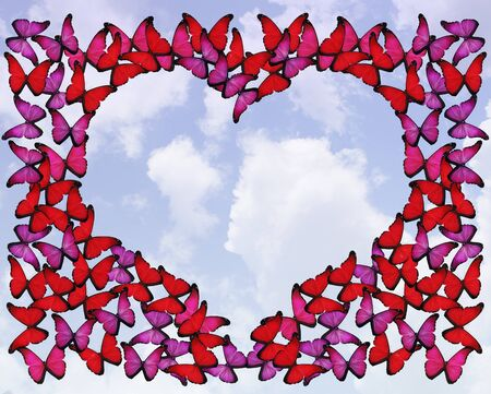 Many red and pink butterflies make frame of heart on white photo