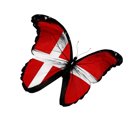 danish: Danish flag butterfly flying, isolated on white background