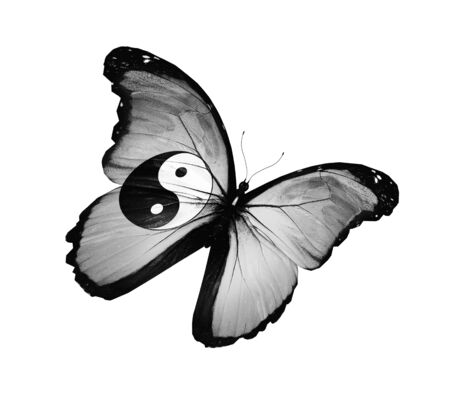 chinese philosophy: Dao flag butterfly, isolated on white