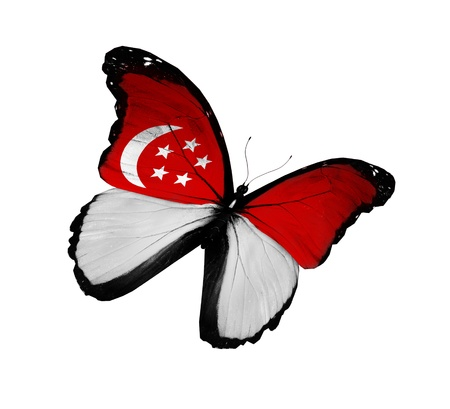 singaporean flag: Singaporean flag butterfly flying, isolated on white background Editorial
