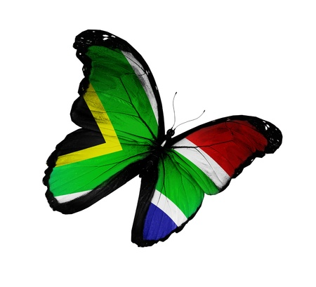 south african flag: South Africa flag butterfly flying, isolated on white background