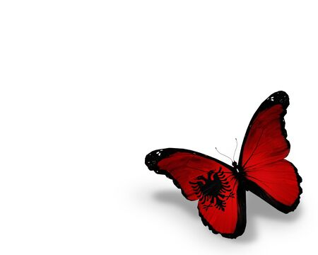 albanian: Albanian flag butterfly, isolated on white background