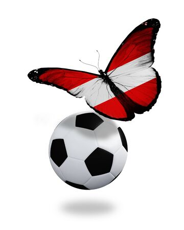 ball like: Concept - butterfly with Austrian flag flying near the ball, like football team playing