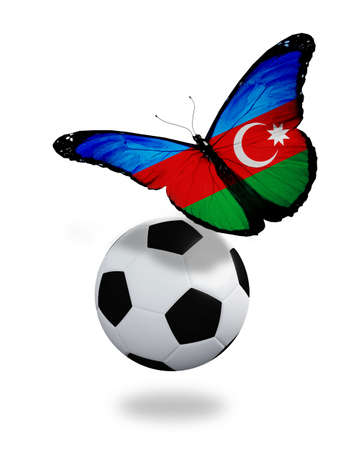 ball like: Concept - butterfly with Azerbaijani flag flying near the ball, like football team playing