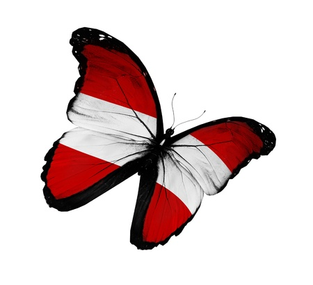 Austrian flag butterfly flying, isolated on white background photo